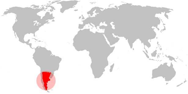 grammostola-pulchripes-aureostriata-weltkarte
